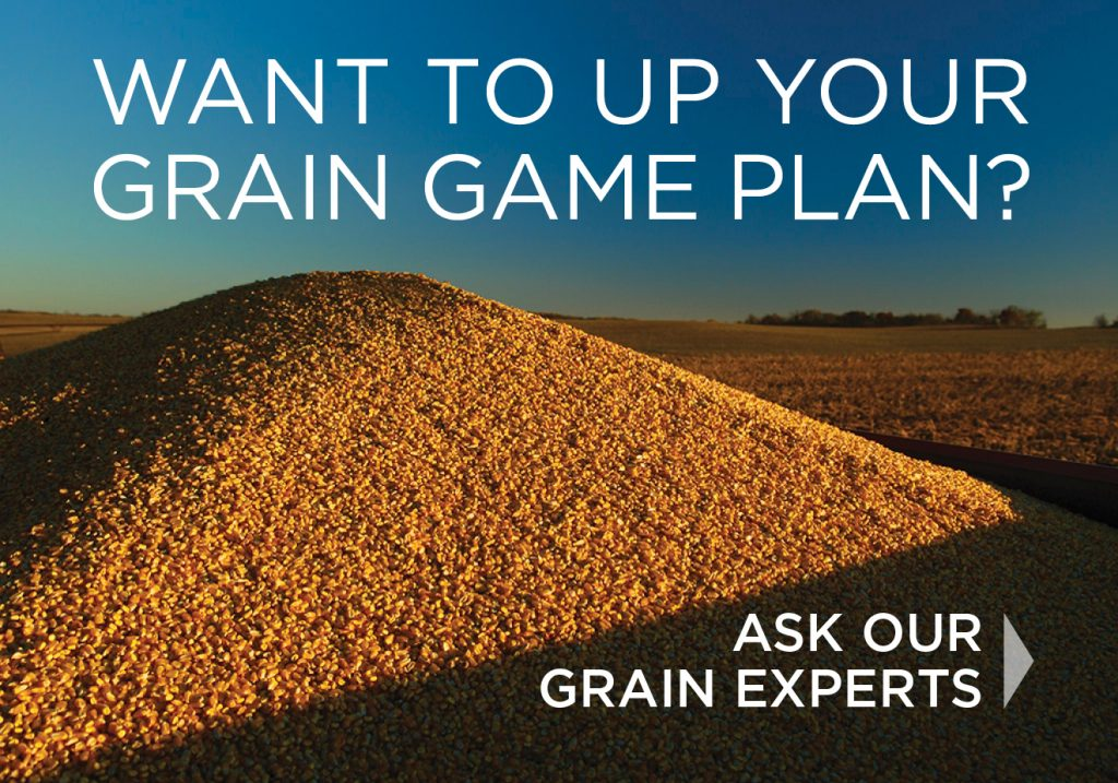 Want to up your grain game plan? Click here for our grain experts contact information.